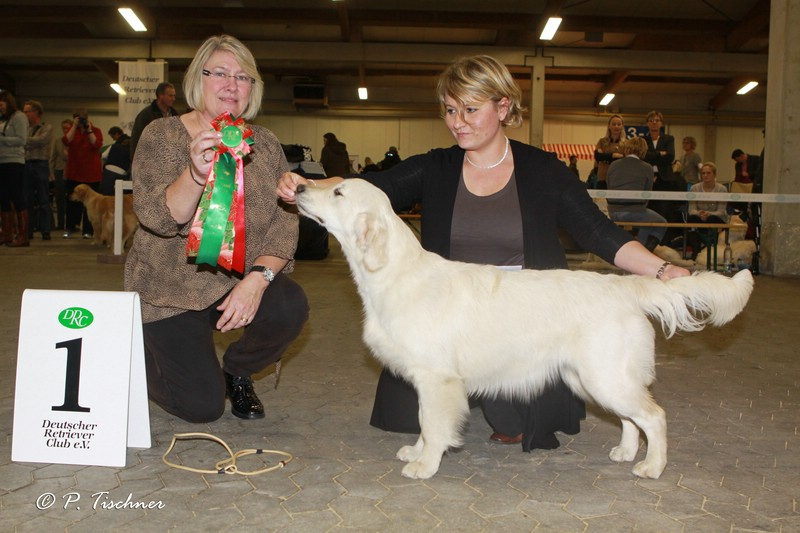 klein_img_1047a-springlove-s-touch-of-yesnaby-best-puppy-in-show