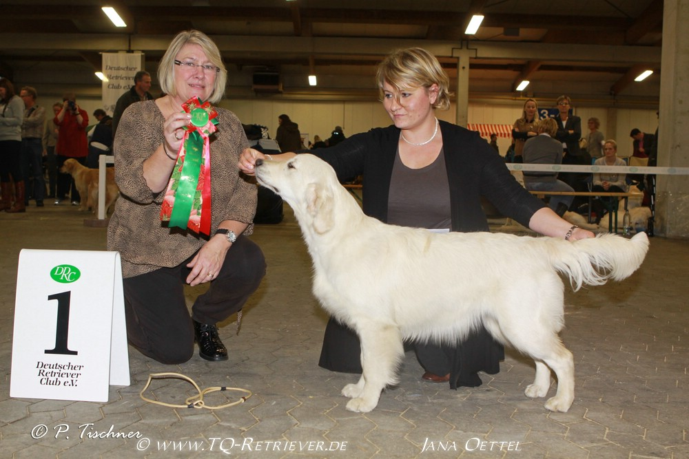 klein_img_1047a-springlove-s-touch-of-yesnaby-best-puppy-in-show_0